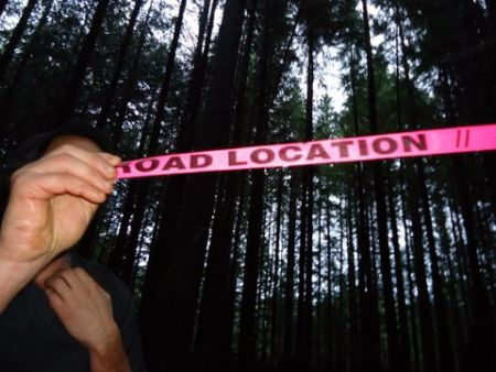 Flagging tape marks a proposed road in the deep forest along the Juan de Fuca trail. Photo: Alysha Tylynn Jones