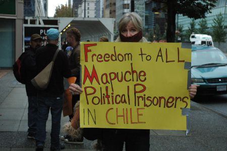 A demonstrator stands in silent solidarity with the Mapuche people