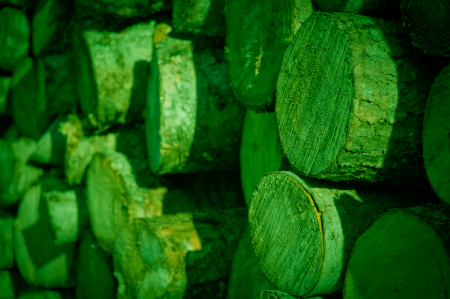 Green Logs? Remix of an image by René Ehrhardt CC2.0