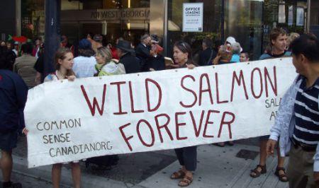 Wild Salmon Forever banner