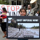 Stopping the Mount Polley Mine