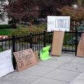 Occupy Nelson