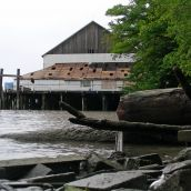 Glenrose Cannery as seen from beach