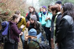 An interested group learns with facilitator Hannah Carpendale about fern species native to coastal British Columbia