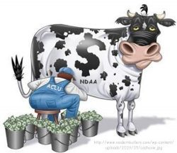 Will ACLU Take the NDAA Bull by the Horns, or Just Milk the Cow?