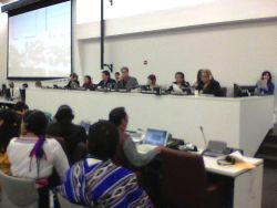 BC Treaty Advocate Elected Chair of UN Permanent Forum on Indigenous Issues