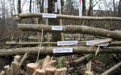 I Grieve Art Collective - on ecocide in Surrey at Hawthorne Rotary Park