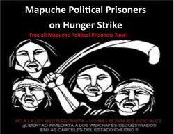 Mapuche Indigenous Political Prisoners Back on Hunger Strike
