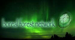 The Boreal Forest Network