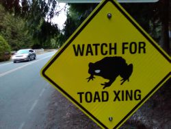 Township of Langley signage for toads